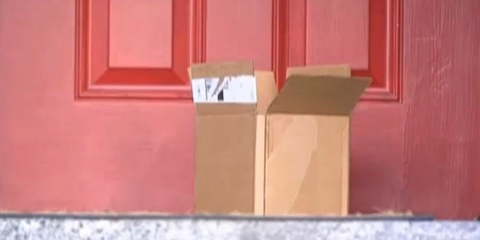 8-Year-Old Girl Gets Disgusting Prank Package In The Mail