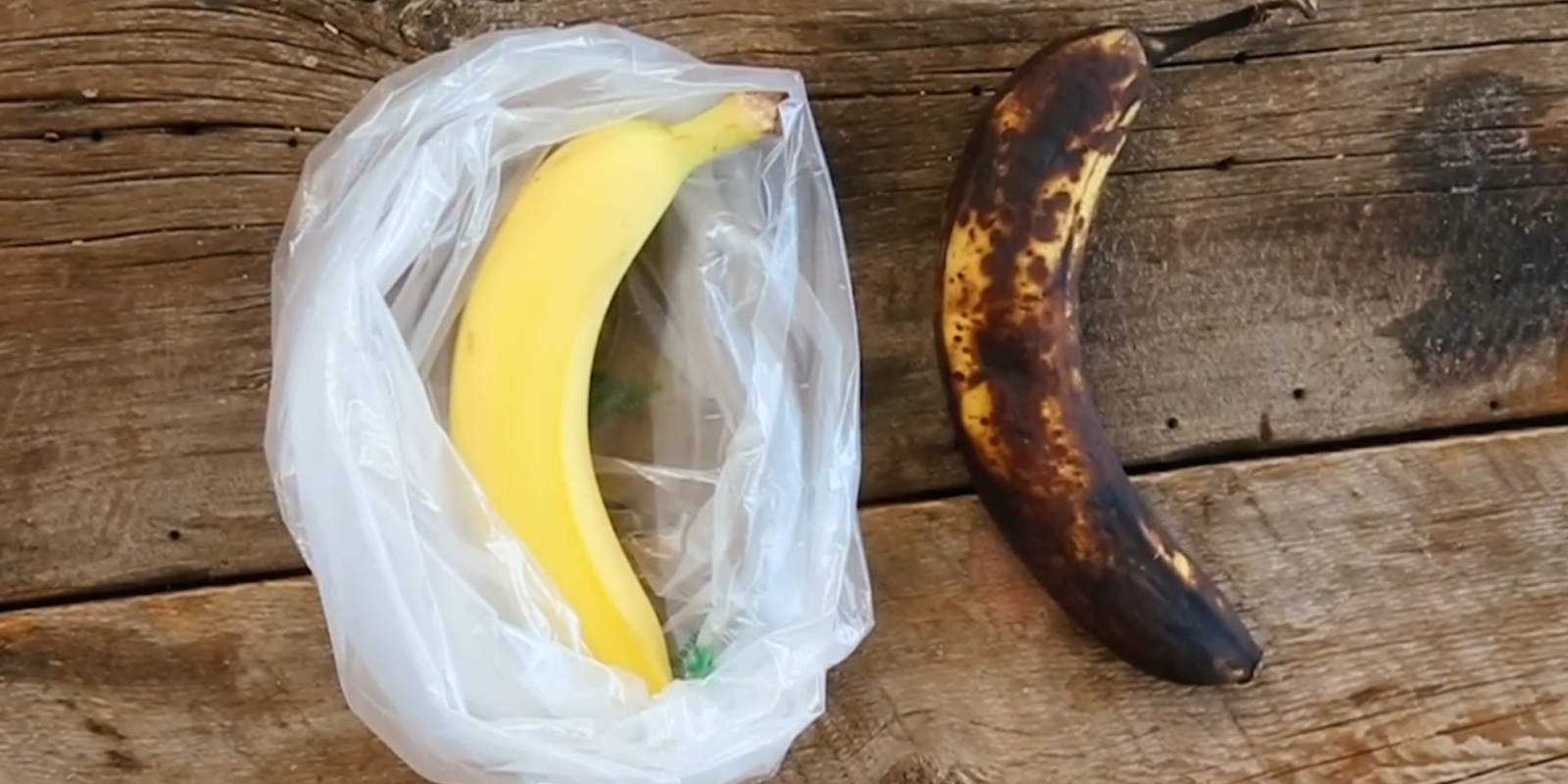 This Handy Storage Bag Keeps Your Produce Fresher, Longer