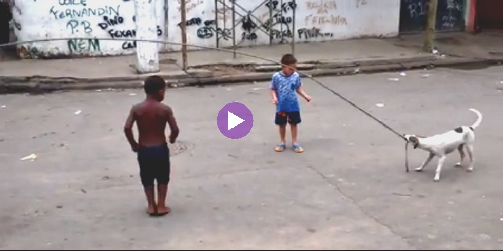 See This Genius Pup Join Kids In A Game Of Jump Rope