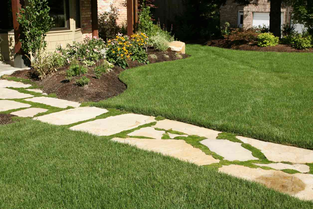 10 budget friendly backyard landscaping ideas for Professional landscaping ideas