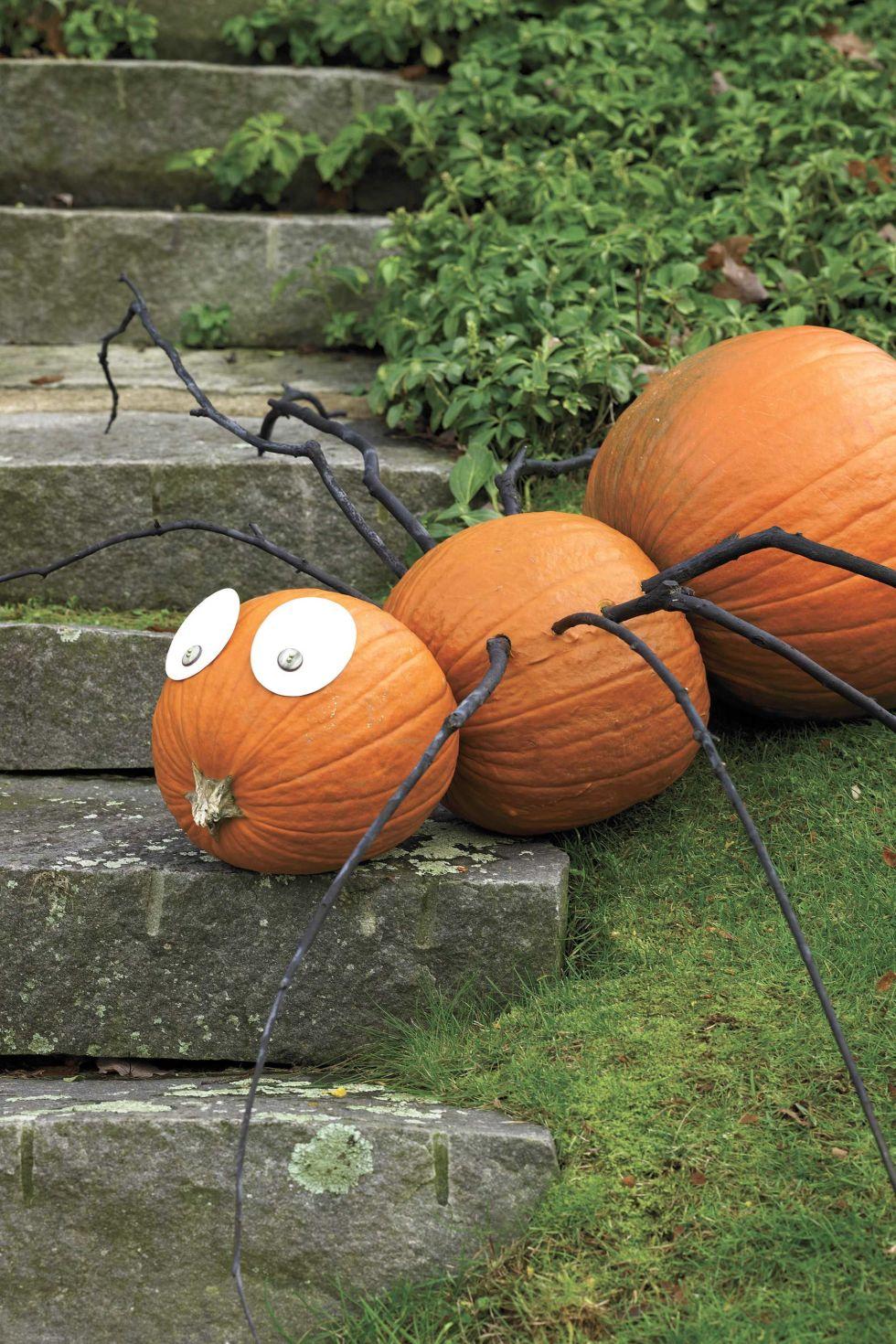 25 best no carve pumpkin decorating ideas fun designs for no carve halloween pumpkins
