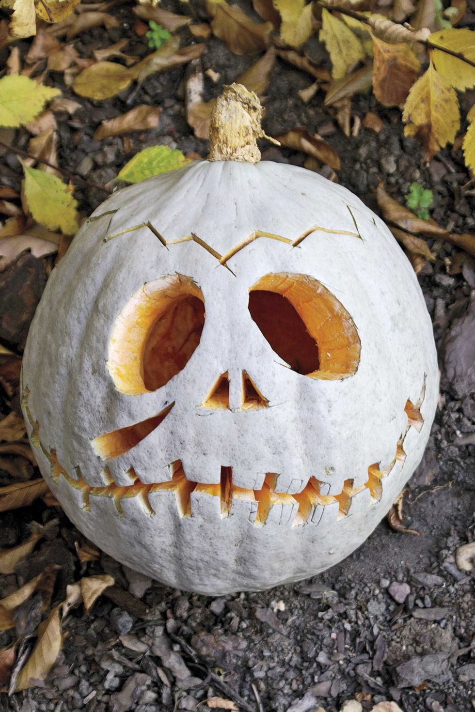 65 best pumpkin carving ideas halloween 2017 creative jack o lantern designs - Decorated Halloween Pumpkins