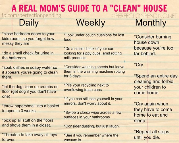 Cleaning Guide For Real Moms Blogger Creates Hilarious