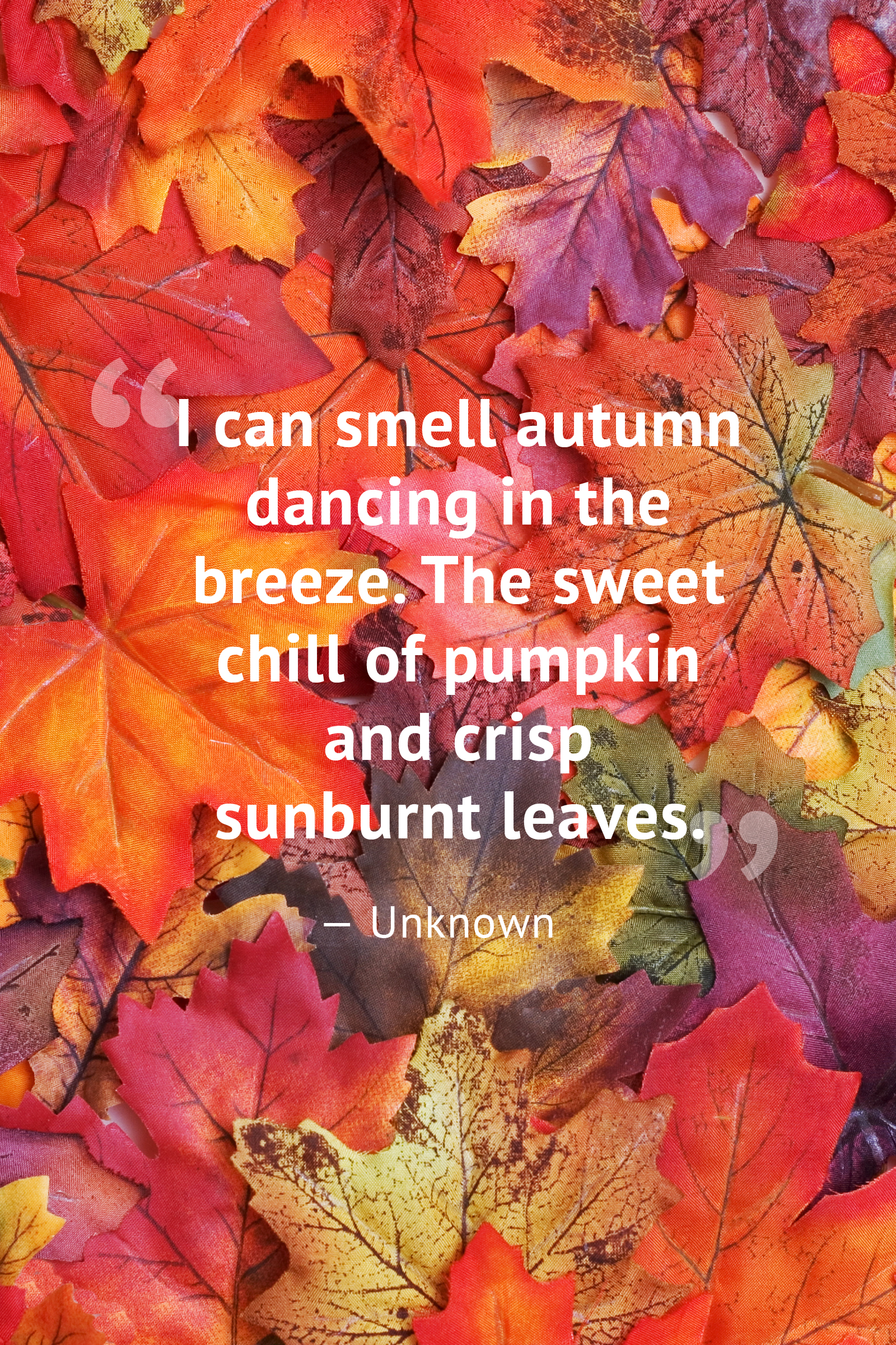 10 beautiful fall quotes