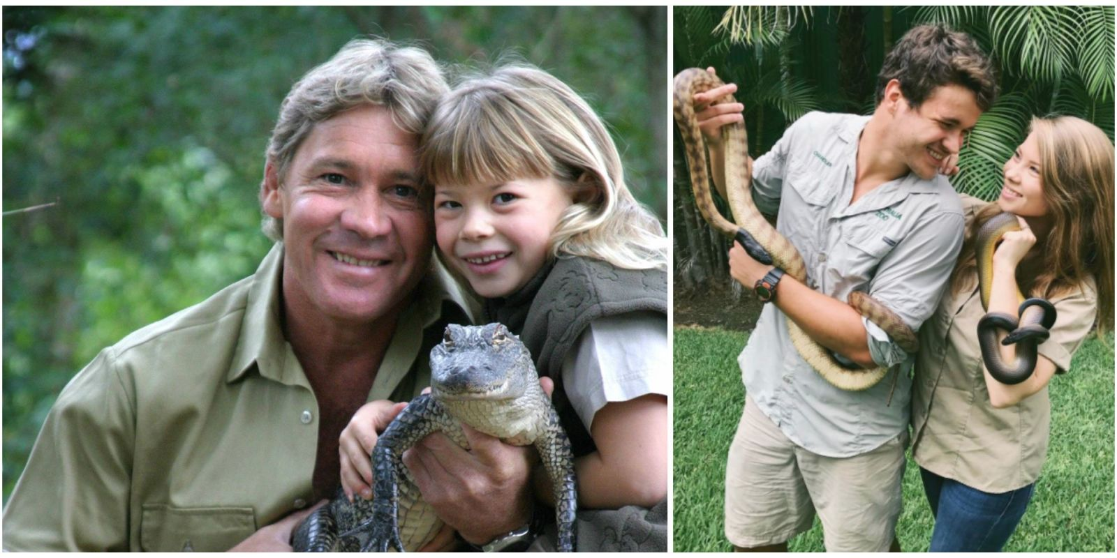 Bindi Irwin And Chandler Powell Love Story