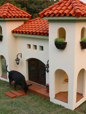 Unique dog houses at womansdaycom view some unique dog for Extreme dog houses