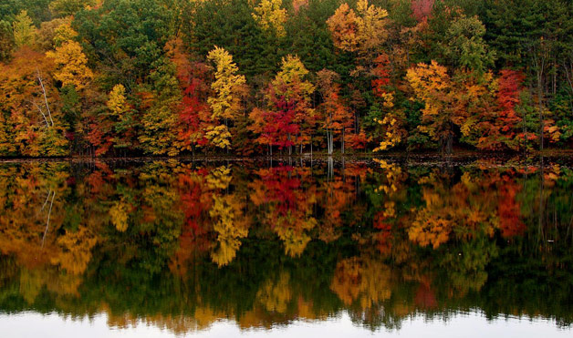 Fall Landscapes Pictures Fall Foliage Pictures at