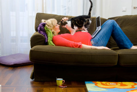Can A Pregnant Woman Change The Cat Litter Box