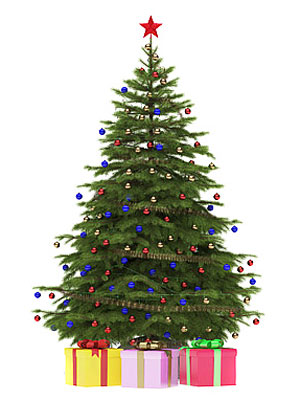 Christmas Tree Buying Guide - How to Score the Perfect Christmas ...