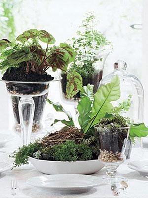 nature inspired home decor. houseplant tips Nature Inspired Decor  Spring Decorating Ideas at WomansDay com