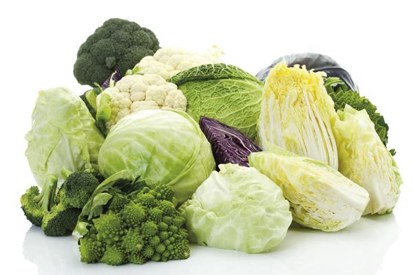 Top 25 Fat Burning Foods , veggies