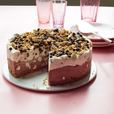 Smores Ice Cream Cake Recipe