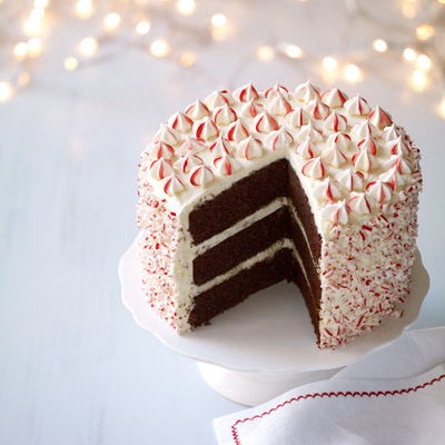 Christmas Peppermint Chocolate Cake Ideas