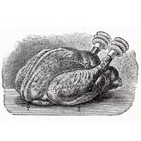 Artichoke and Almond-Stuffed Chicken Breasts Artichoke and Almond-Stuffed Chicken Breasts new pictures
