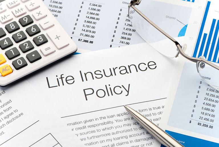 Life insurance term paper