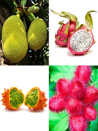 strange fruit fruits that are healthy