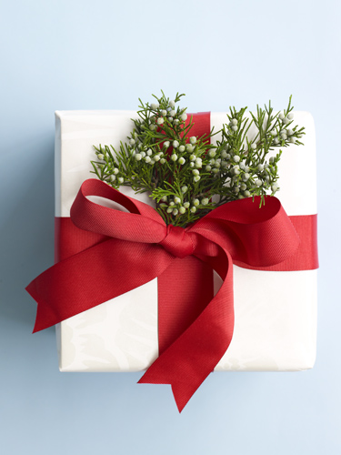 Holiday Gift Ideas - Affordable Christmas Presents for Everyone at ...