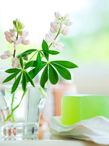 Beauty products  Organic organic Beauty and Organic makeup natural Products Natural