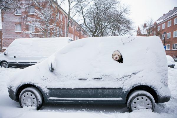 car snow removal snow on cars. Black Bedroom Furniture Sets. Home Design Ideas