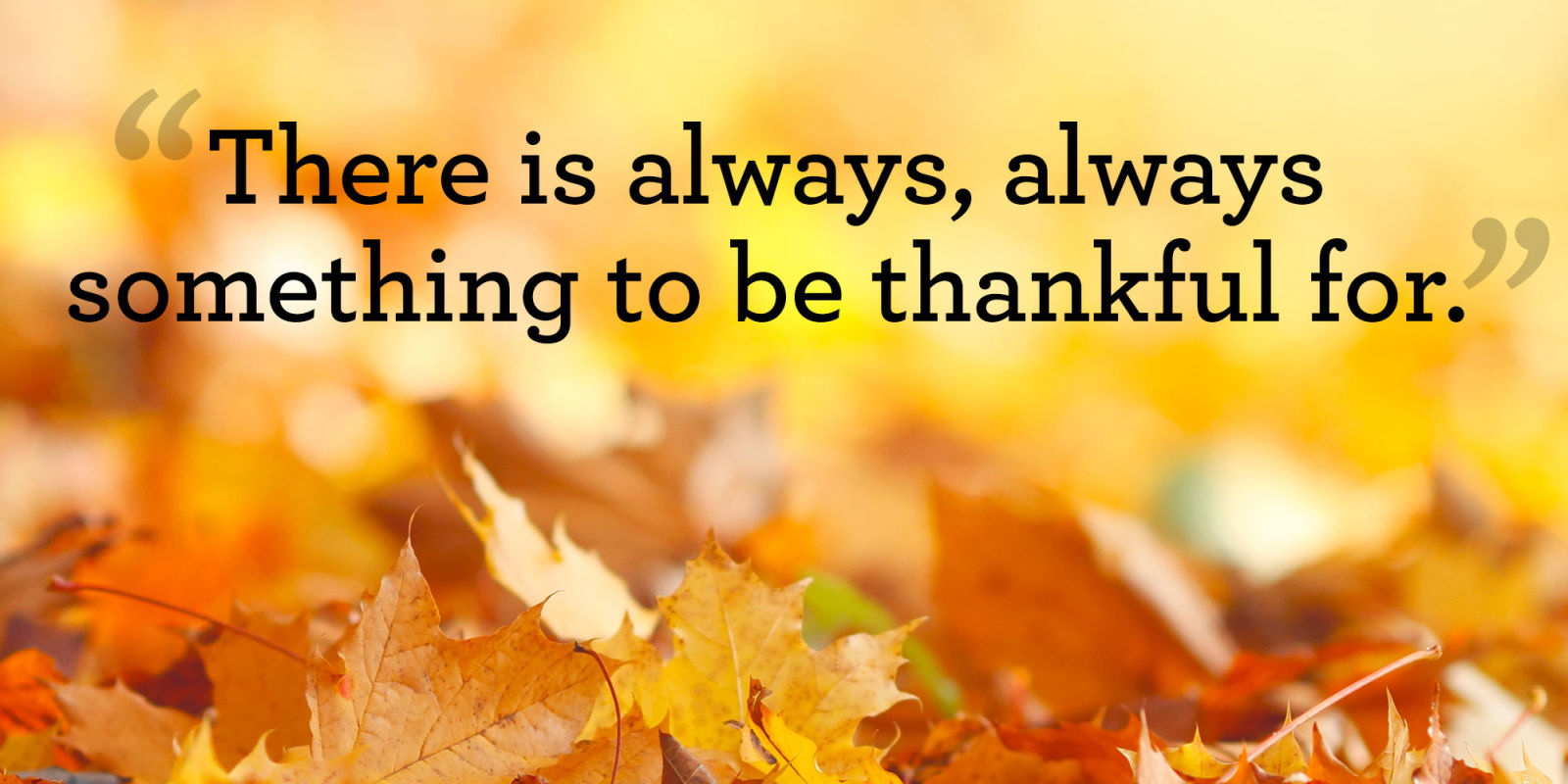 Image result for thankful quotes for thanksgiving