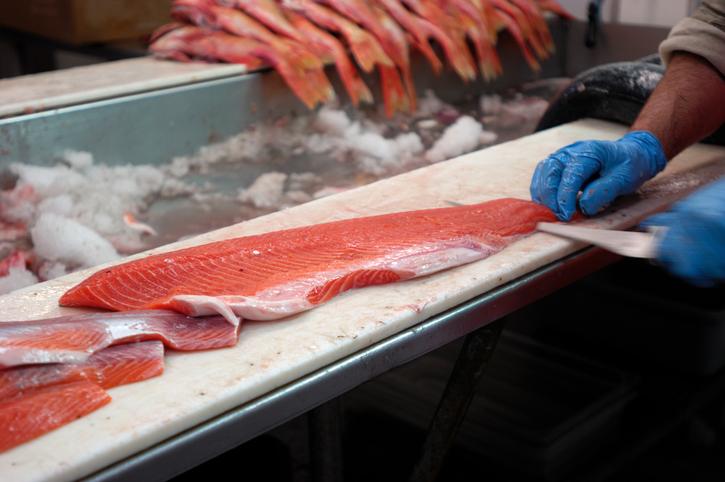 wild caught salmon is better than organic